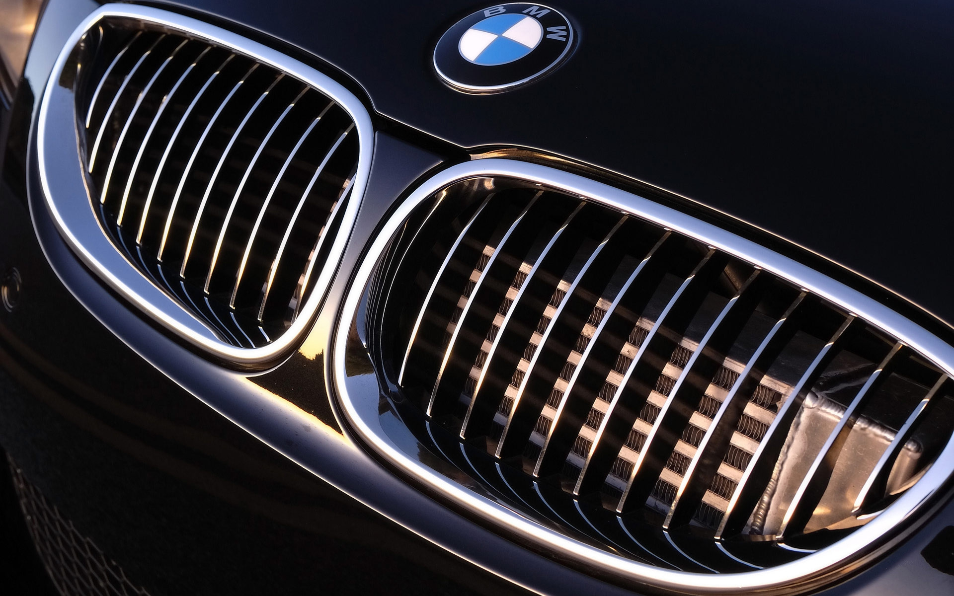 BMW-Logo-Background-Free-Download